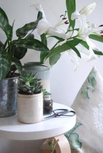 catesthill-laura-ashley-botanical-25